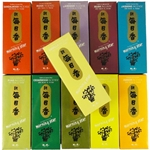 Morning Star Incense (200 Sticks/Box)